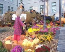 jardin-halloween-quebec